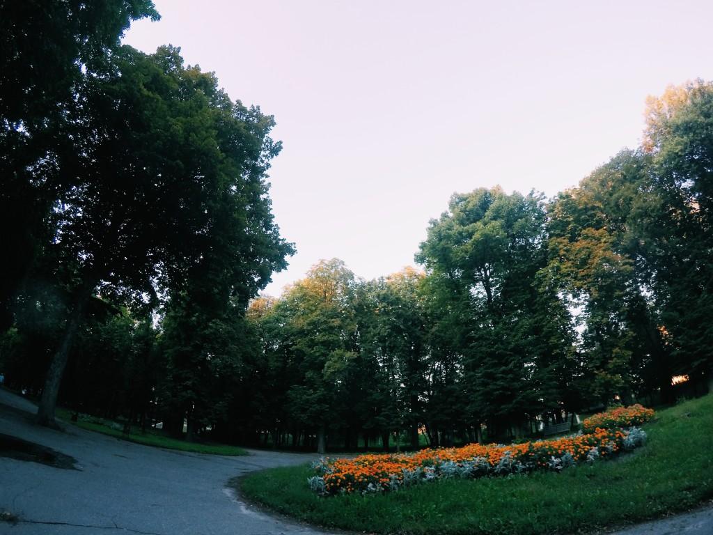 Парк имени Кожедуба город Сумы